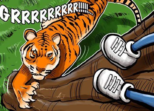 Банки Индии временно заблокировали счета биткойновых бирж