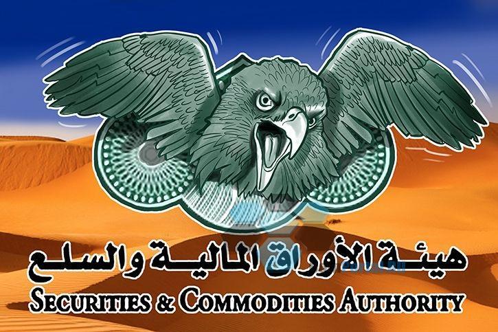 Власти ОАЭ предостерегает от участия в ICO