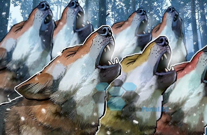 Волк с Уолл-Стрит: Перед обвалом биткойн может стоить 50.000$
