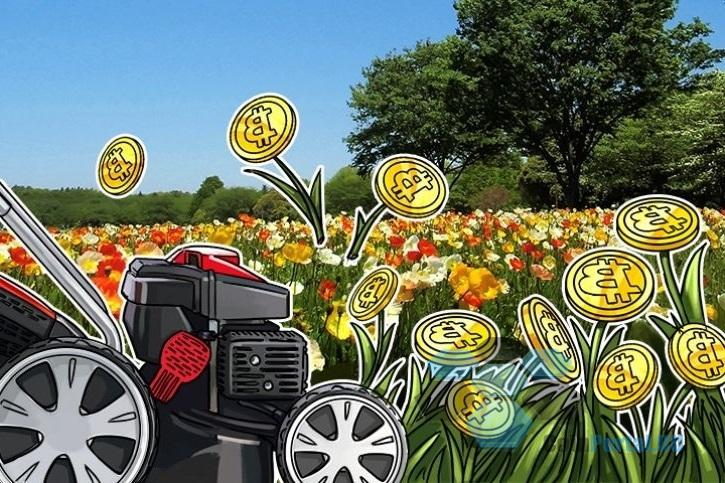Британский поставщик IT-оборудования создаст крупнейшую биткойн-ферму